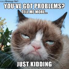 Grumpy Lawyer Cat
